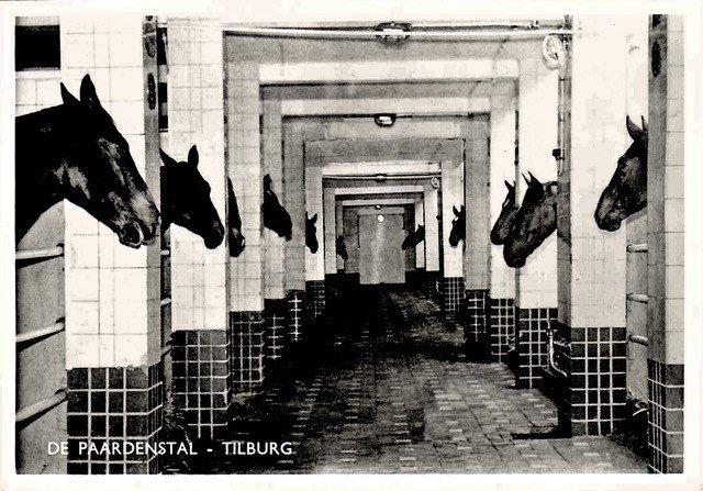 Piushaven 1, Tilburg. Paardenstallen bij de meelfabriek.